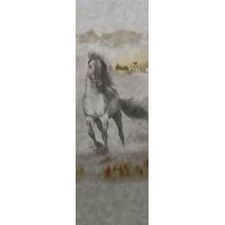Mural 19371-DCK MURALTO DECOSKIN 2015 rodeo 98x300cm